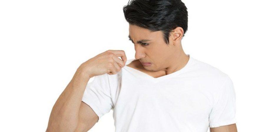 الشومر يعد من النباتات العطرية النفاذة القادرة على تعطير رائحة الجسم بشكل طبيعي