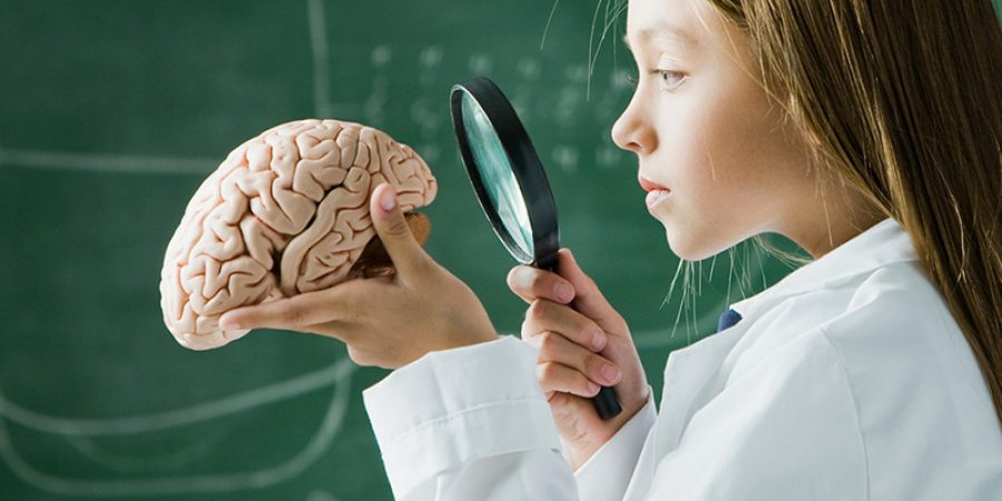 أمراض مثل ضغط الدم والسكري من النوع الثاني تدمر الأوعية الدموية الصغيرة في الدماغ، فتؤثر على الأجزاء التي تحتاجها للتفكير والذاكرة.